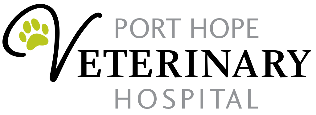 Port Hope Veterinary Hospital | Port Hope, ON